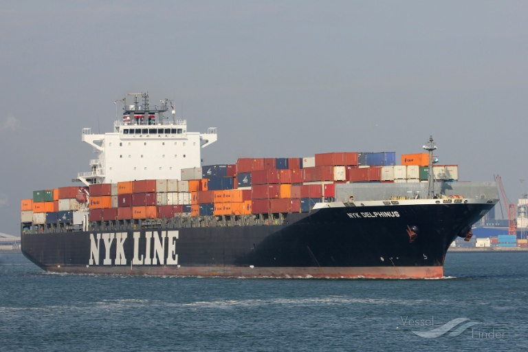 NYK DELPHINUS photo
