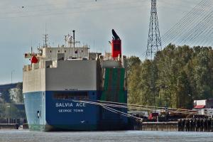 Photo of SALVIA ACE ship