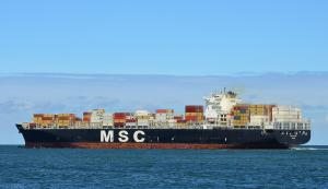 Photo of MSC PINA ship