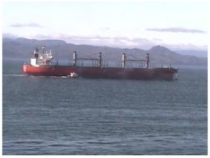 Photo of GLOBAL SAIKAI ship