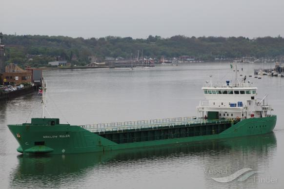 ARKLOW RULER photo