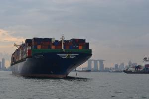 Photo of HYUNDAI BRAVE ship