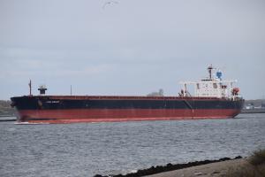 Photo of CAPE MERLIN ship