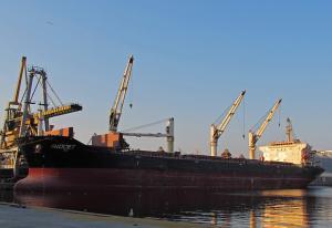 Photo of AVOCET ship