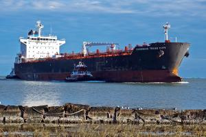 Photo of OVERSEAS TEXAS CITY ship