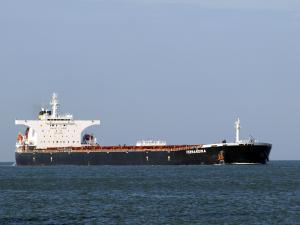 Photo of FERNANDINA ship