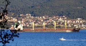 Photo of MV MALLIKA NAREE ship