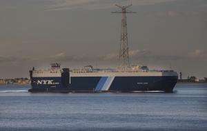 Photo of GRACEFUL LEADER ship