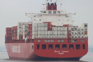 Photo of MONTE TAMARO ship
