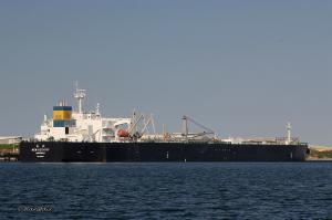 Photo of NEW ACTIVITY ship