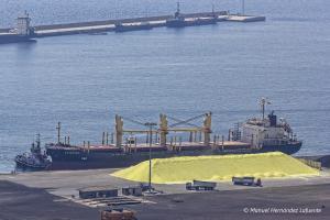 Photo of AVIATOR ship