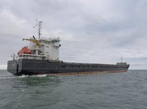 Photo of KAREWOOD STAR ship