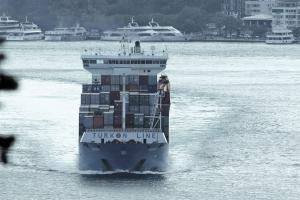 Photo of SEDEF ship