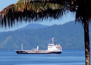 Photo of CHELSEA ENDURANCE ship