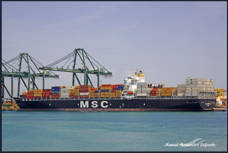 MSC FIAMMETTA photo