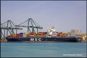 MSC FIAMMETTA (MMSI: 372843000)