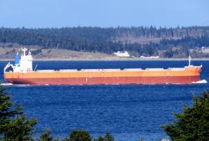 Photo of TAURUS OCEAN ship