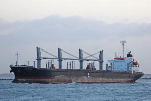 Photo of IVS SHIKRA ship