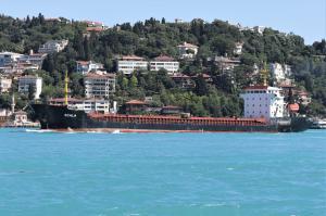 Photo of SCALA ship