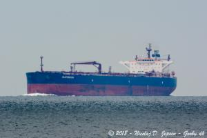 Photo of SEAPRINCESS ship