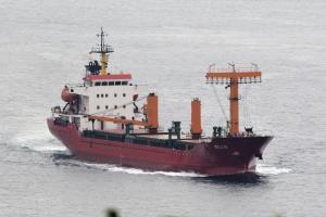 Photo of BELLIS ship