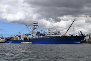 Photo of TXORI GORRI ship