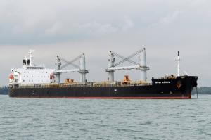 Photo of MOMI ARROW ship