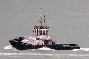 Photo of NOBLE JEWEL ship