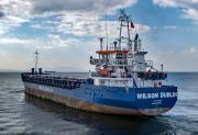 WILSON DUBLIN (MMSI: 305812000)