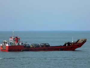 Photo of CIPTA JAYA MAKMUR ship