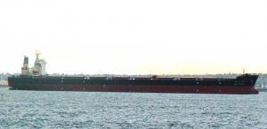 Photo of NIAN FENG HAI ship