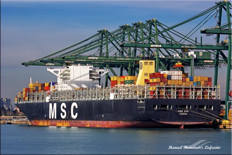MSC EVA photo