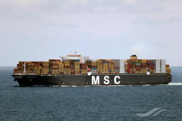 MSC GAIA photo