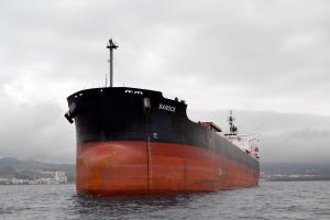 Photo of ST. DIMITRIOS ship
