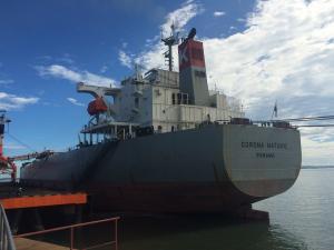 Photo of CORONA NATURE ship