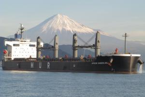 Photo of WANDA999 ship