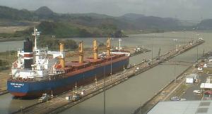 Photo of GLOBE PEGASUS ship