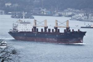 Photo of RODINA ship