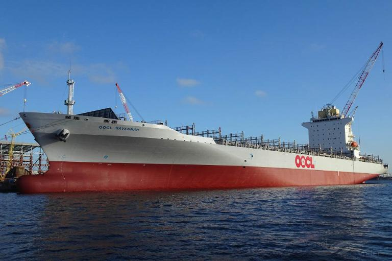 OOCL SAVANNAH photo
