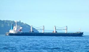 Photo of CORAL GEM ship