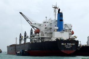Photo of BULK PARAISO ship