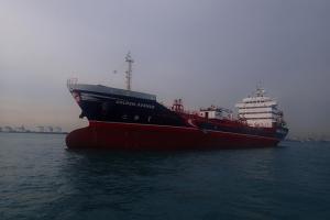 Photo of GOLDEN AVENUE ship