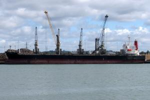 Photo of TRITON VALK ship