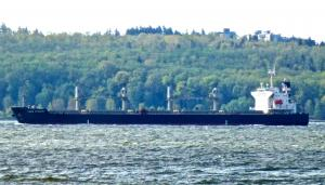 Photo of LAKE DYNASTY ship