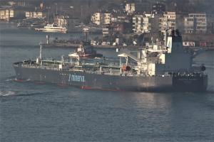 Photo of MINERVA MARINA ship