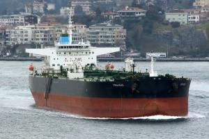 Photo of PEGASUS ship