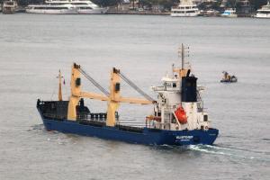 Photo of VLISTDIEP ship