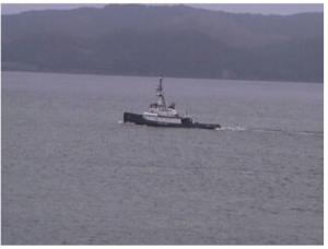 Photo of MIKIONA ship