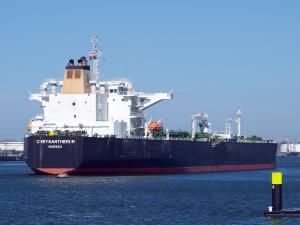 Photo of CHRYSANTHEMUM ship
