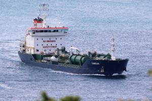 Photo of T.CAROLINE ship